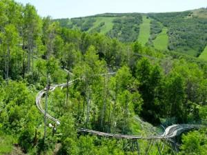 PCMR roller coaster.