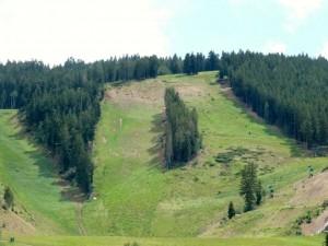Deer Valley Big Stick and Little Stick ski runs.