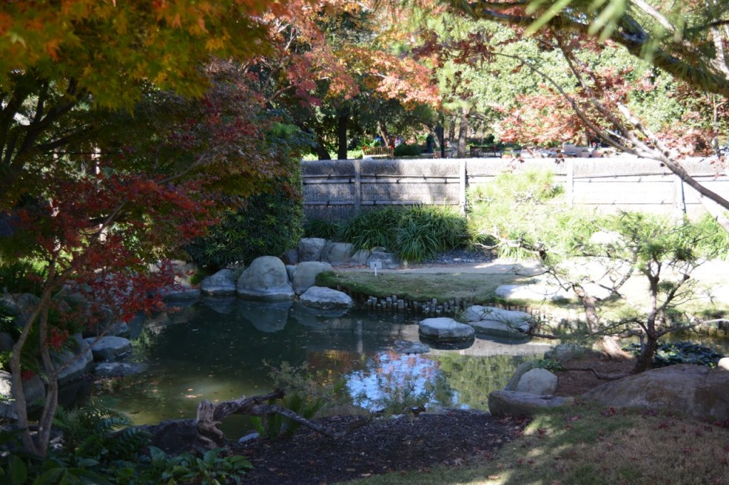 Japanese garden. A better way to spend Black Friday.