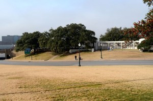 The famous grassy knoll.