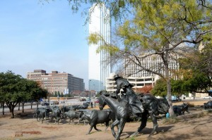 Bronze statues in Pioneer park of a roundup - 49 bronze steers and 3 trail riders.