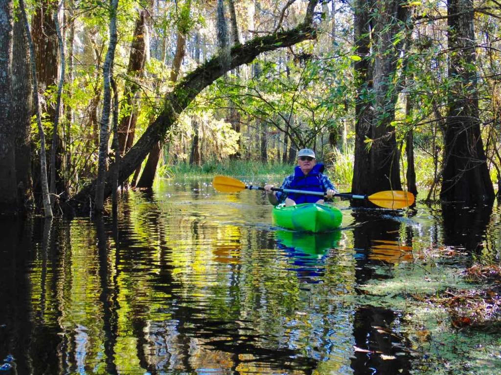 Swamp tour.