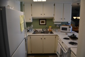 Compact - small - kitchen. Thankfully only room for one.
