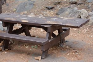 35 miles down Kings Canyon and they chain down the picnic tables to stop the scrots messing.